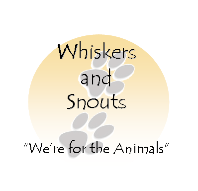 Whiskers and Snouts